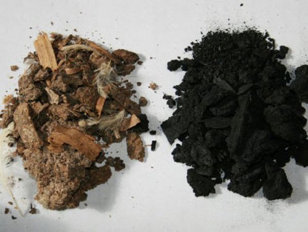 biochar_can_capture_carbon_and_improve_soil_vy92t[1]